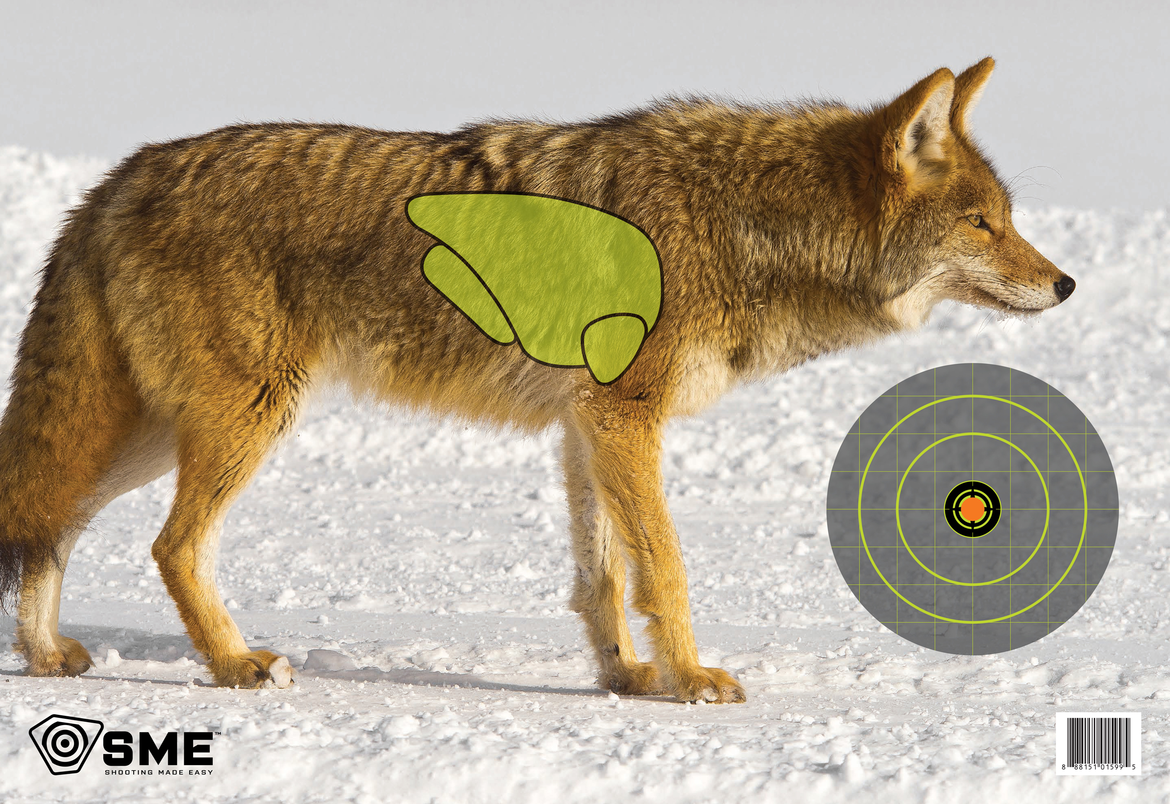 SME SMETRGCOYOTE Coyote Vital Point Target 3 Pack 16.5