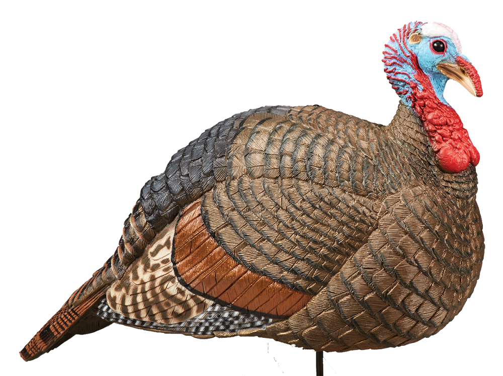 Hunters Specialties 07601 Jake Snood Turkey Decoy